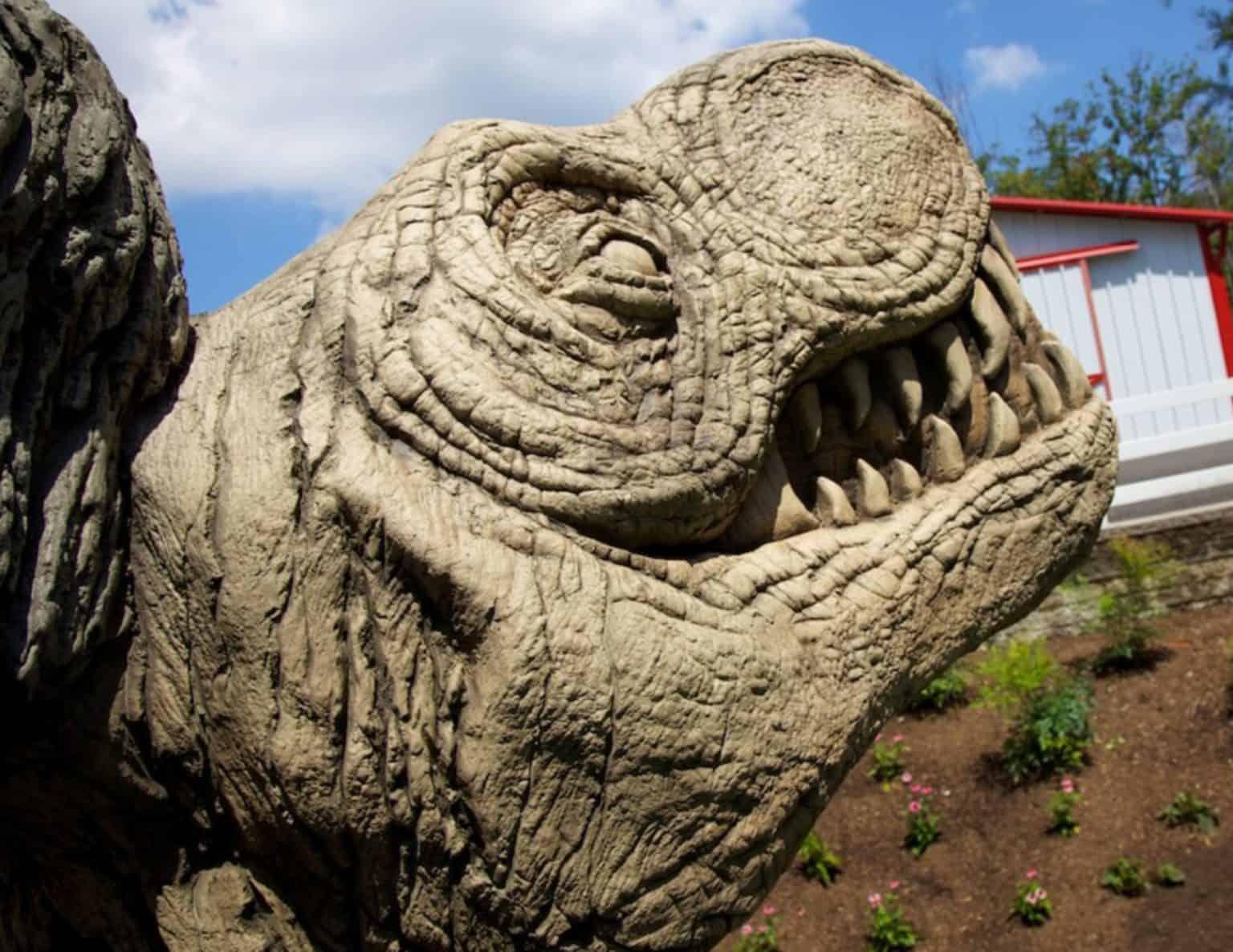 turtle-back-zoo-playground-west-orange-nj_11519248176_o-1-1536x1186